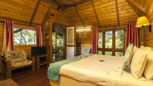 tree_house_great_escapes_resorts_munnar_2_ofhvcb
